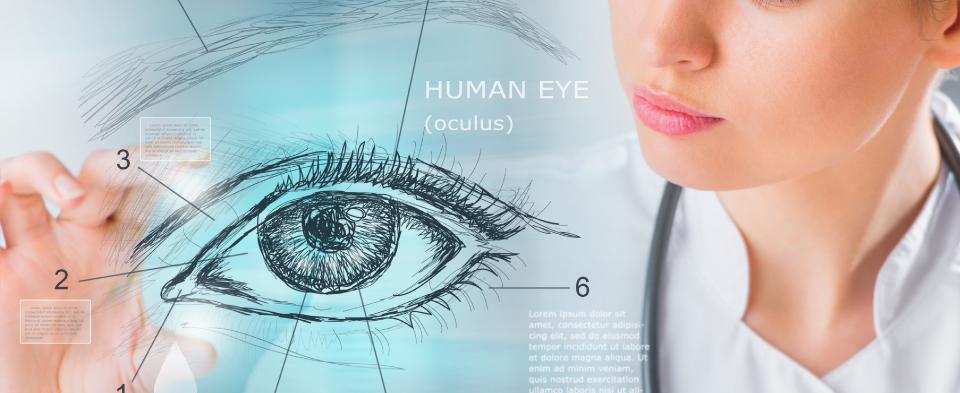 Exeter Eye Education programme for GPs Optometrists
