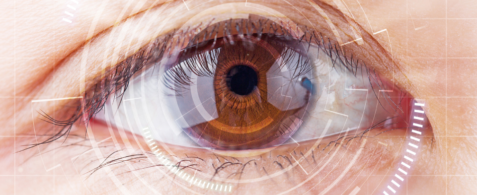 Exeter Eye Implantable Contact Lenses