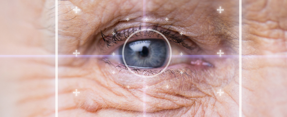 Exeter Eye treatments Macular Hole Treatment